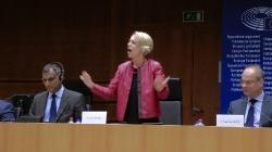 Многоезичие и равни права в Европейския съюз: ролята на жестовите езици_27